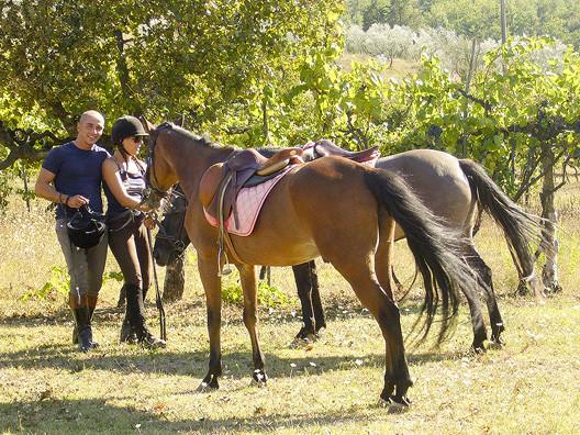 Trekking Equitazione Firenze Sud