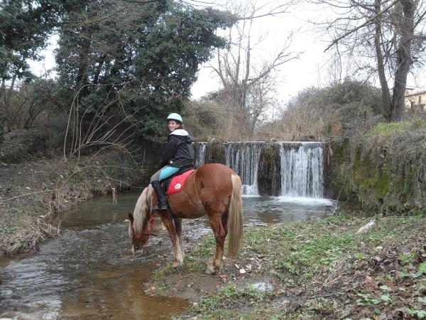Horse Riding Firenze