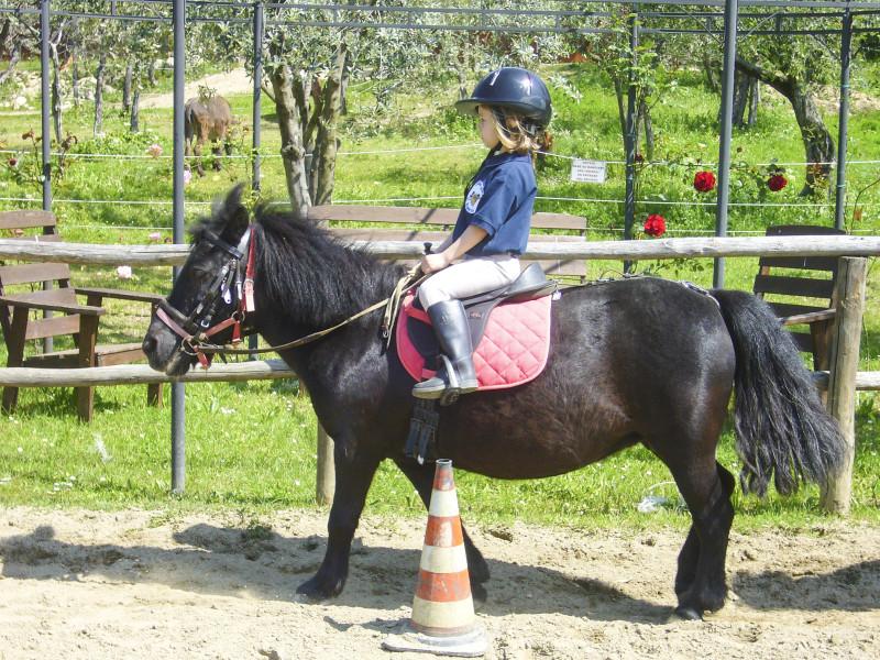 Maneggio Equitazione Bambini Firenze